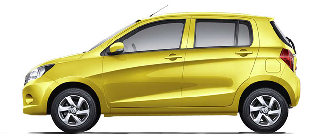 celerio-Sunshine-Ray.jpg